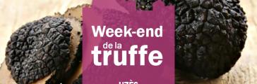 truffe